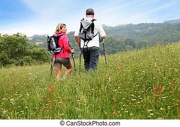visión trasera, de, pareja mayor, excursionismo, en, campo