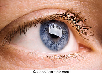 vision - macro concept, special toned selective focus on ...