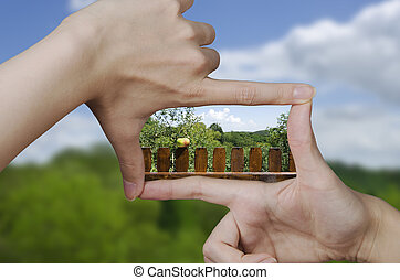 vision of a picket fence with apple