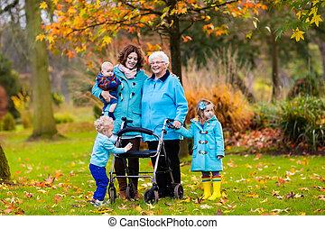 visita familiar, caminhante, sênior, desfrutando, senhora