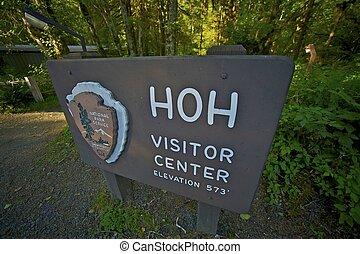 visitante, bosque, hoh, centro