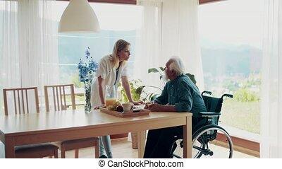 visiteur, fauteuil roulant, visit., santé, pendant, maison, homme aîné