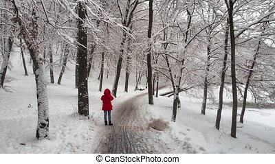 Visitor Photographs Snowscape at Holosiivskyi Park in Kiev...