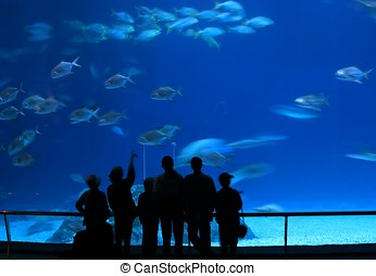 Visitors at Aquarium - -- admiring the marine life in a huge...