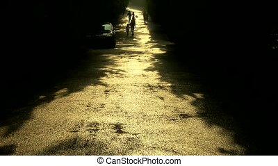Visitors walk under the shade of trees, walking on road.