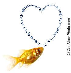 visje, goud