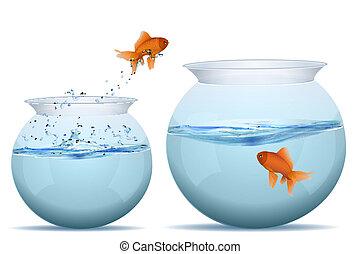 visje, springt, reservoir, een ander, een
