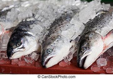 vissen, met, ijs, op, tafel
