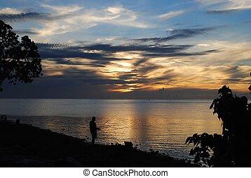 visser, silhouette, ondergaande zon