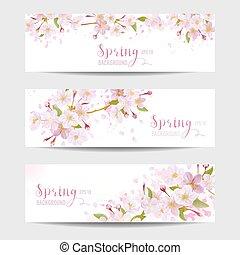 visszaugrik virág, transzparens, állhatatos, -, cseresznye kivirul fa, -, alatt, vektor