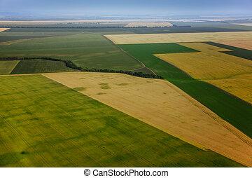 vista aérea, acima, a, verde, campos