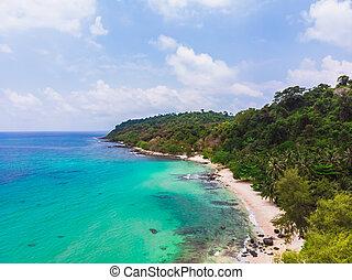 vista aérea, de, bonito, praia, e, mar, com, árvore palma coco