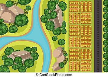 vista aérea, de, jardim vegetal