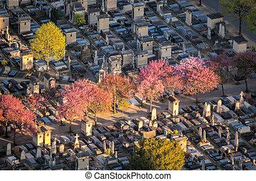 vista aérea, de, montparnasse, primavera, cemitério, em,...