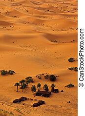 vista aérea, de, sahara, e, beduíno, acampamento, marrocos