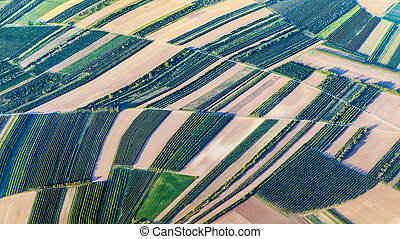 vista aérea, de, verde, campos, e, declives