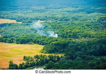 vista aérea, de, wildfire, em, floresta