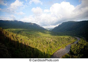 vista aérea, ligado, a, floresta, e, rio