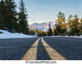 vista angolare bassa, di, striscia, su, montagna nevosa, strada