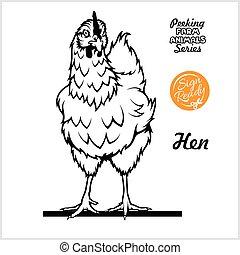 vista, bianco, pieno-lunghezza, gallina, pollo, isolato, -,...