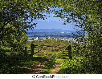 vista, campos, cotswold, verde, manera, a través de
