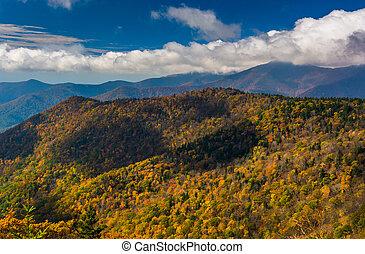 vista, de, cor outono, em, a, montanhas appalachian, de, a, azul