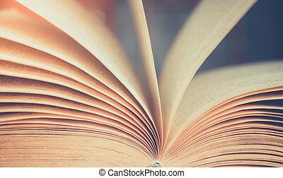 vista, de, livro, páginas