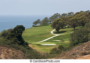 vista, de, pinhos torrey, campo golfe