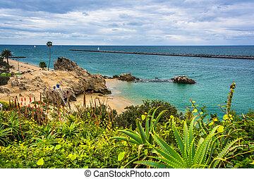 vista, de, um, praia, e, a, oceano pacífico, de, guarda,...