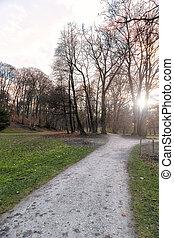 vista, de, un, parque, en, otoño, en, ocaso