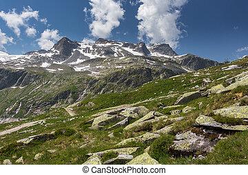 vista, di, montagne, in, summer., neve-ricoperto, montagne, in, austriaco, alps., cielo, con, clouds., collina, coperto, con, erba, in, primo piano., persone camminando, lungo, hiking traccia