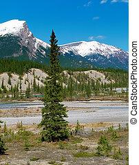 vista, en, rockies canadienses, montañas