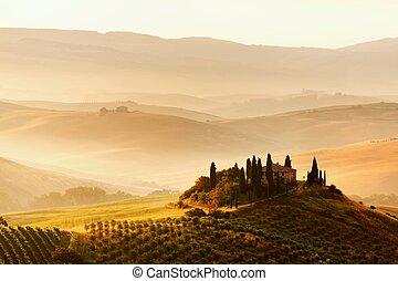 vista escénica, de, típico, toscano, paisaje