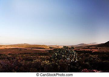 vista escénica, de, valle de montaña, en, ocaso