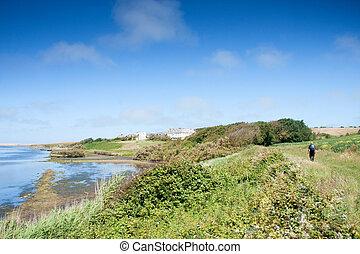 vista escénica, de, weymouth, inglaterra