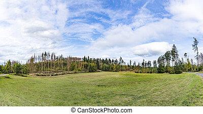 vista, escénico, árboles, wisper, paisaje, hesse, viejo, muerto, tradicional, debido, agricultura, clima, valle, bosques, warming