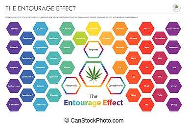 vista geral, infographic, negócio, séquito, efeito,...