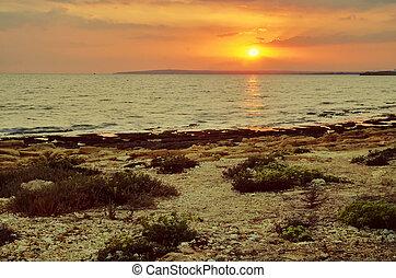 vista, il, tramonto, mare, con, corallo, coast., cipro