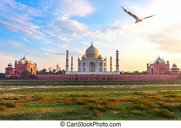 vista, india, mahal, agra, yamuna, taj, río