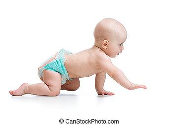 vista lateral, de, rastejar, bebê, isolado, branco, fundo
