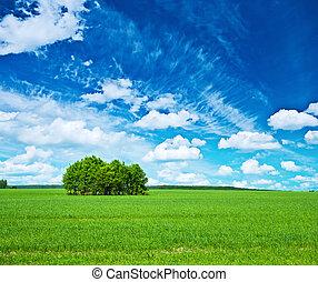 vista, ligado, campo verde, azul, céu