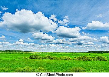vista, ligado, campo verde, e, beleza, céu nublado
