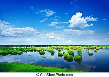 vista, ligado, um, inundação, campo