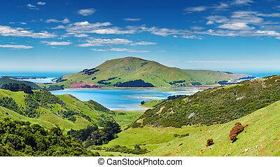 vista, nova zelândia, litoral