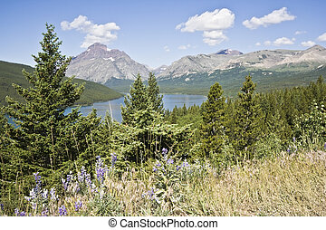 Vista of Glacier National Park in Montana