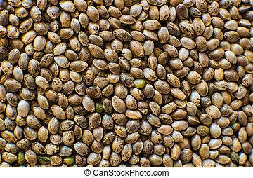 vista., orgânica, macro, seeds., macro., detalhe, seed., marijuana, cannabis, sementes, fundo, muitos, cânhamo, topo