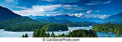 vista panoramic, de, tofino, ilha vancouver, canadá