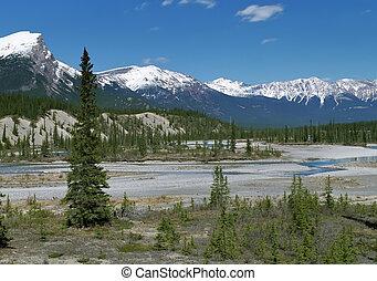 vista panoramic, ligado, canadense rochoso, montanhas
