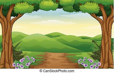 vista, sporcizia, colline, sentiero foresta