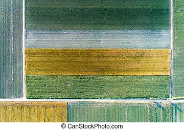 vista superior, de, agrícola, pacotes